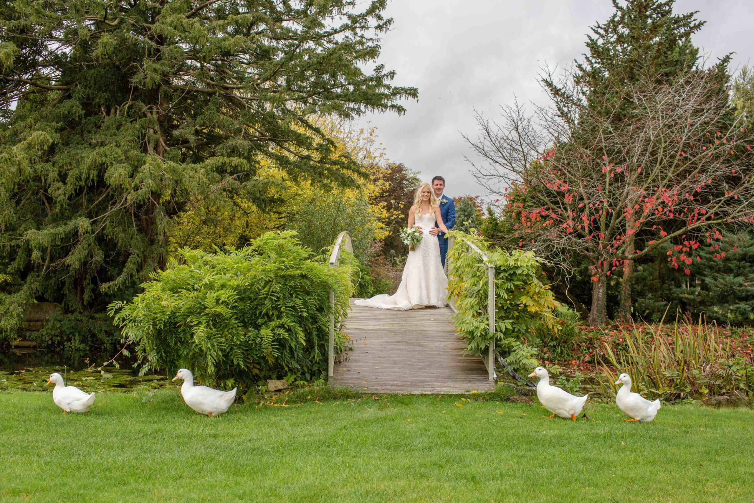 Cotswolds Wedding Photography, Groom hugging Bride stood on a wooden bridge with ducks walking across lawn in foreground, Caswell House, Oxfordshire