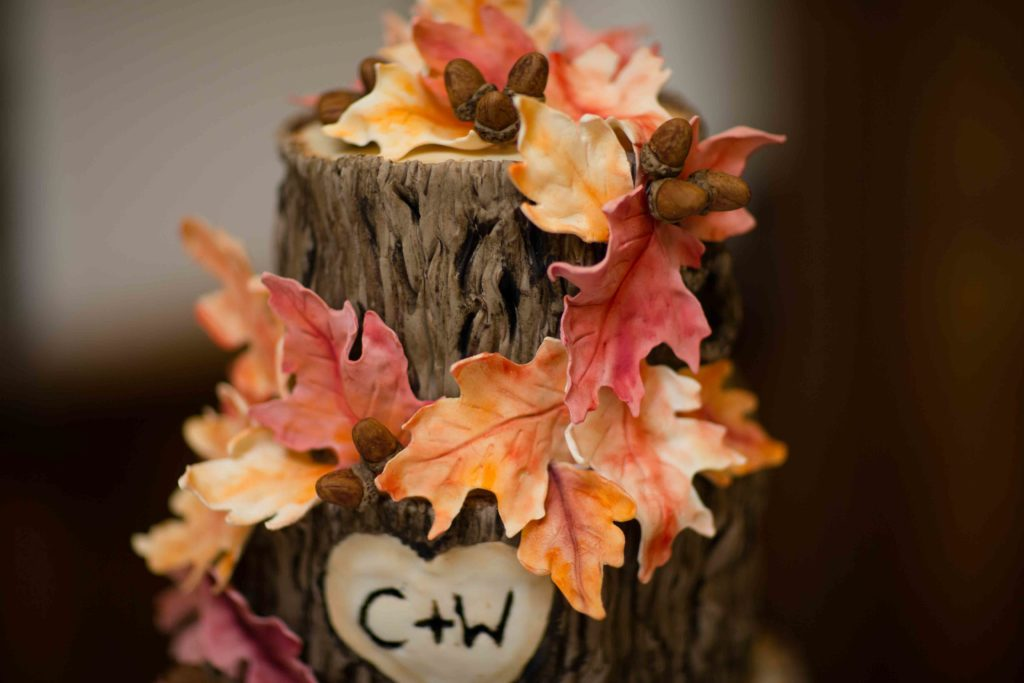 Wedding Cake, decorated naturally to look like a logs sat end on end in there tiers with autumn leaves and C&W in heart on second tier